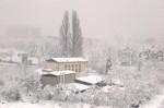 Snow1209