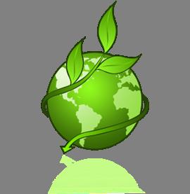 Green Environmental Programs